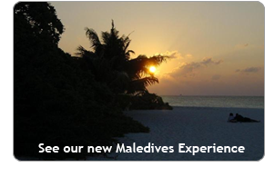 See our new Maledives Experience