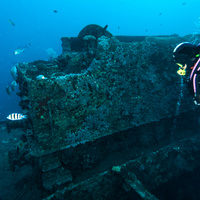 wagon on SS Thistleghorm wreck