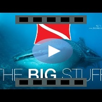The Big Stuff - Maledives